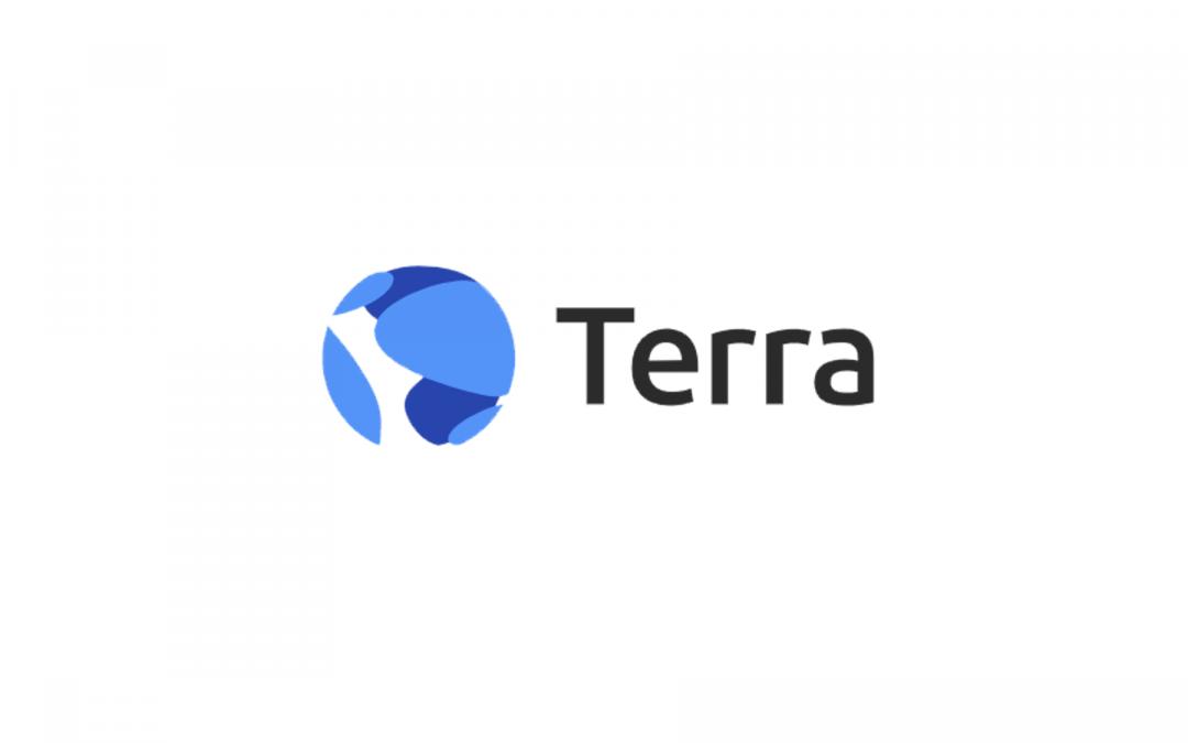 Terra (LUNA) Fundamentalanalyse